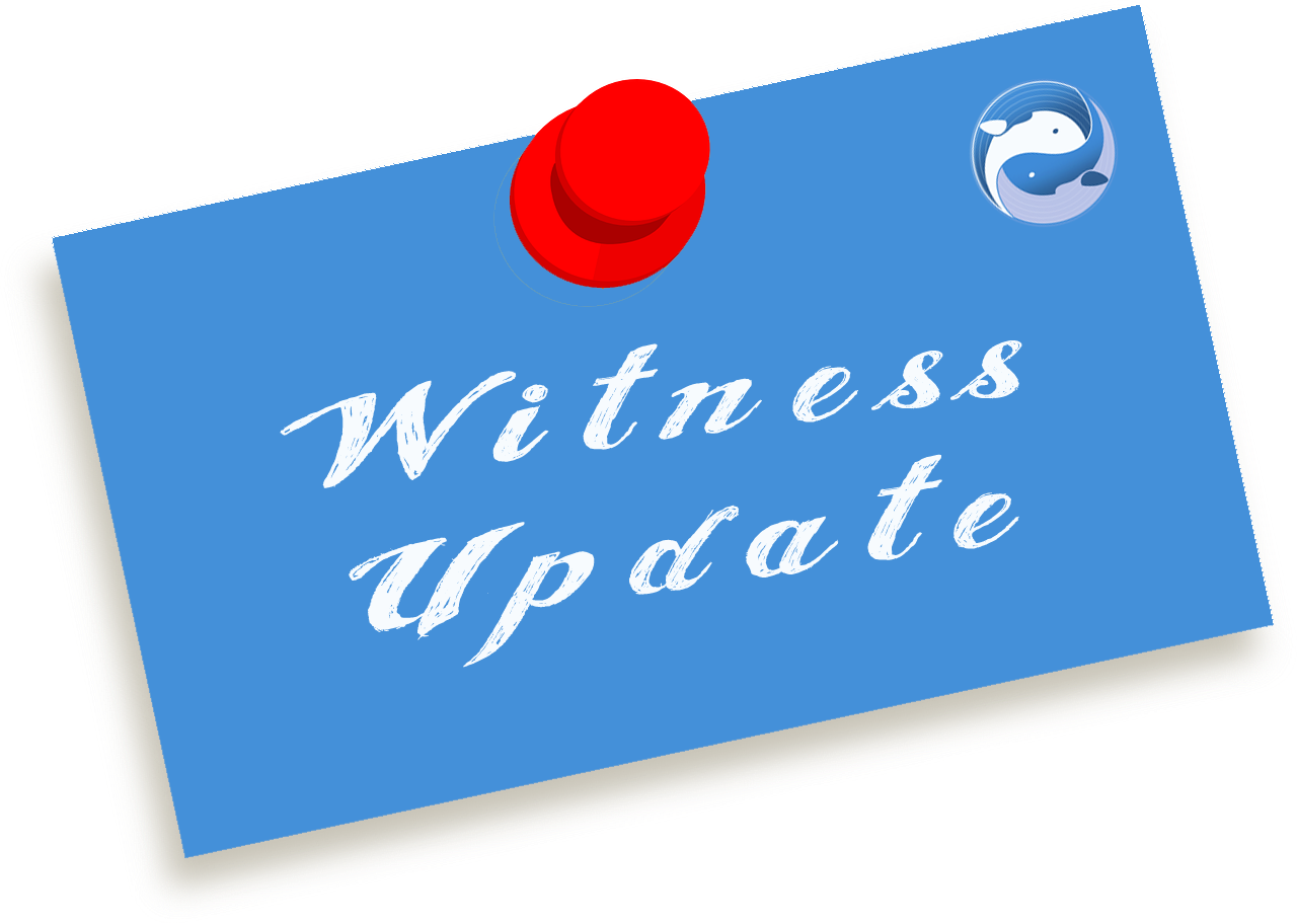 witness_update.png